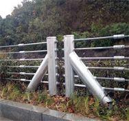 绳索护栏 钢绞线护栏