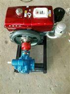 张家港齿轮泵,电厂专用高压高温齿轮油泵