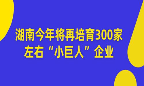 """2020总数超过1000家 湖南今年将再培育300家左右""""小巨人""""企业"""
